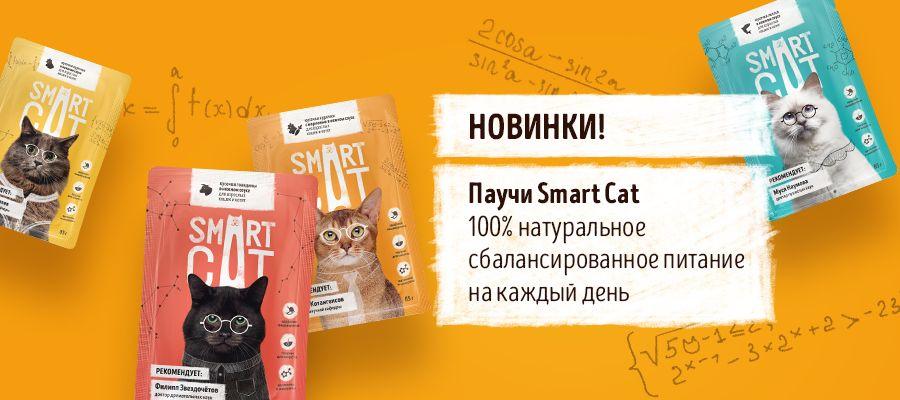 Smart Cat Паучи для кошек