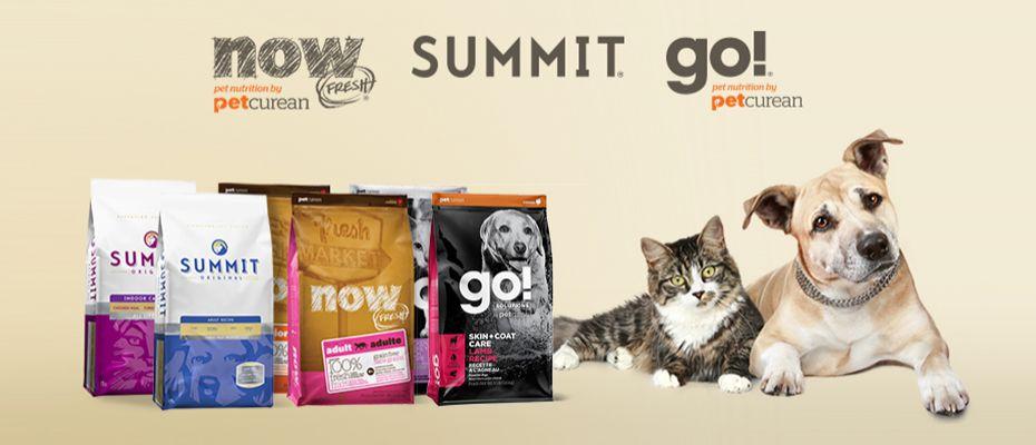 Go!, Now, Summit для кошек и собак